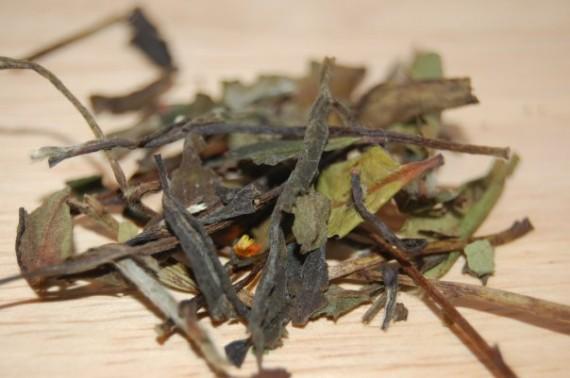 Hvit Havtorn te